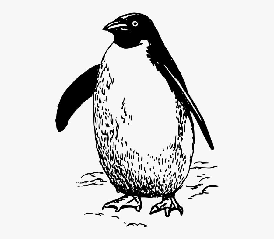 Flightless Bird,wildlife,line Art - Black And White Clipart Emperor Penguin, Transparent Clipart