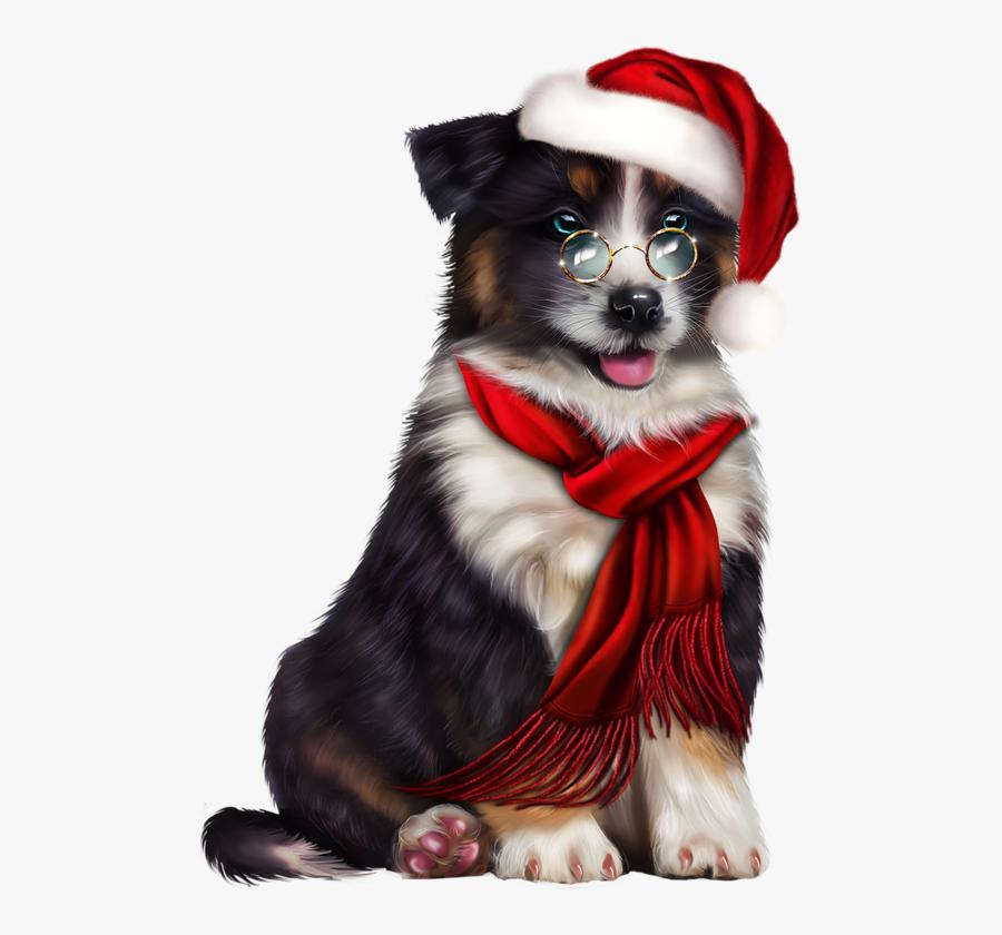 Transparent Australian Shepherd Clipart - Companion Dog ... (900 x 840 Pixel)