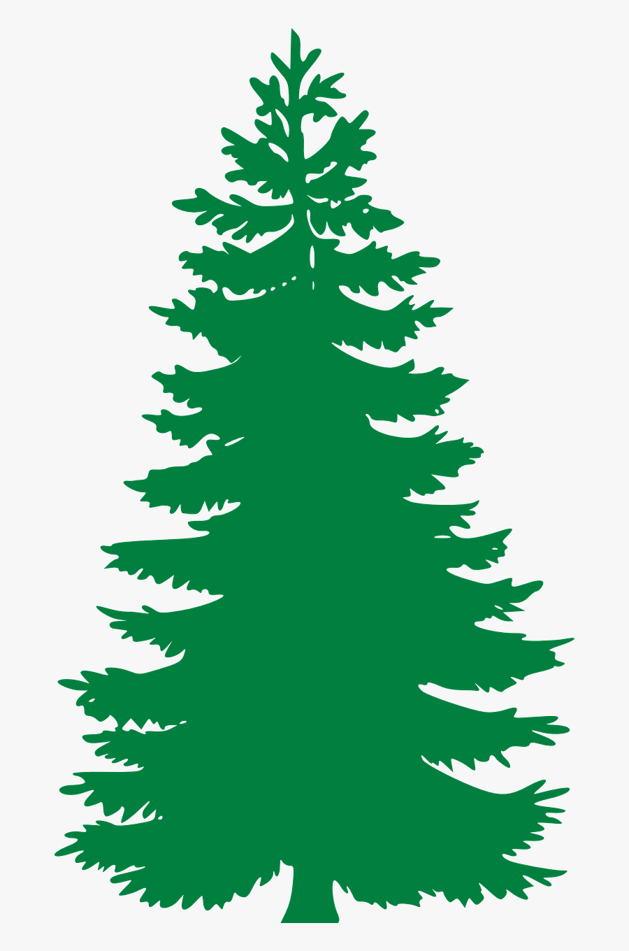 Free Image On Pixabay - Black And White Pine Tree, Transparent Clipart