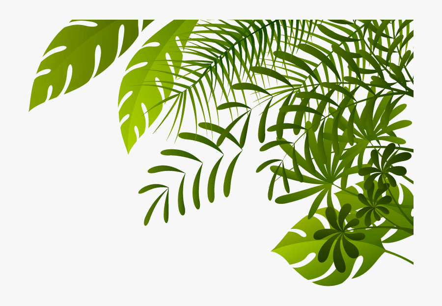Jungle Image Jungle Leaves Border Png Free Transparent Clipart Clipartkey Multicolored floral border illustration, tropics flower euclidean jungle, purple tropical jungle. jungle image jungle leaves border png