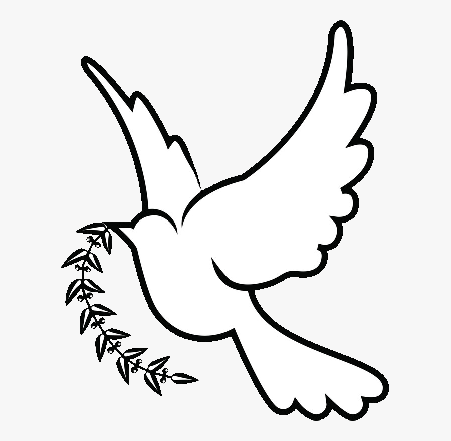 Columbidae Christianity Symbols As Dove Doves Clipart - White Dove Drawing Png, Transparent Clipart