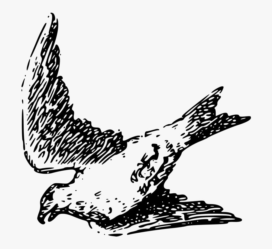 Art,monochrome Photography,beak - Drawing, Transparent Clipart