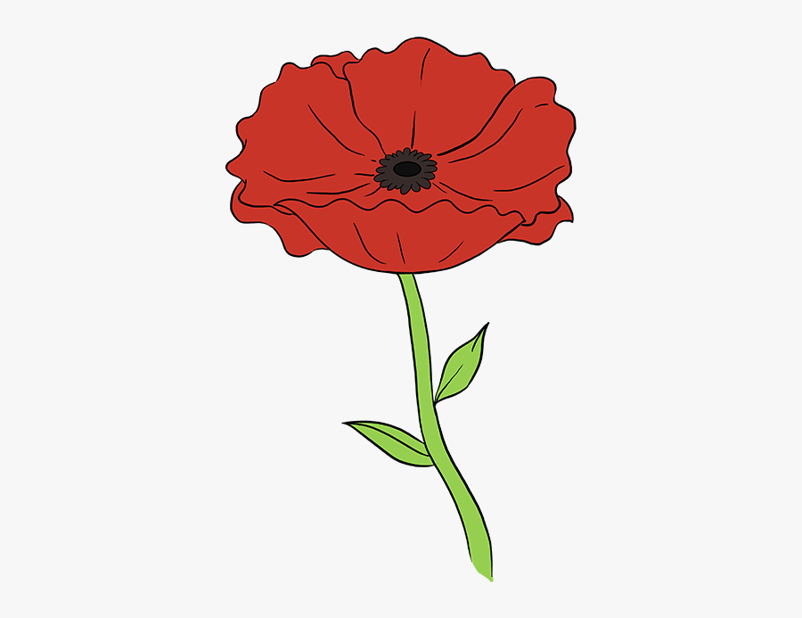 Clip Art Really Easy Drawing Tutorial - Draw A Poppy Step By Step, Transparent Clipart