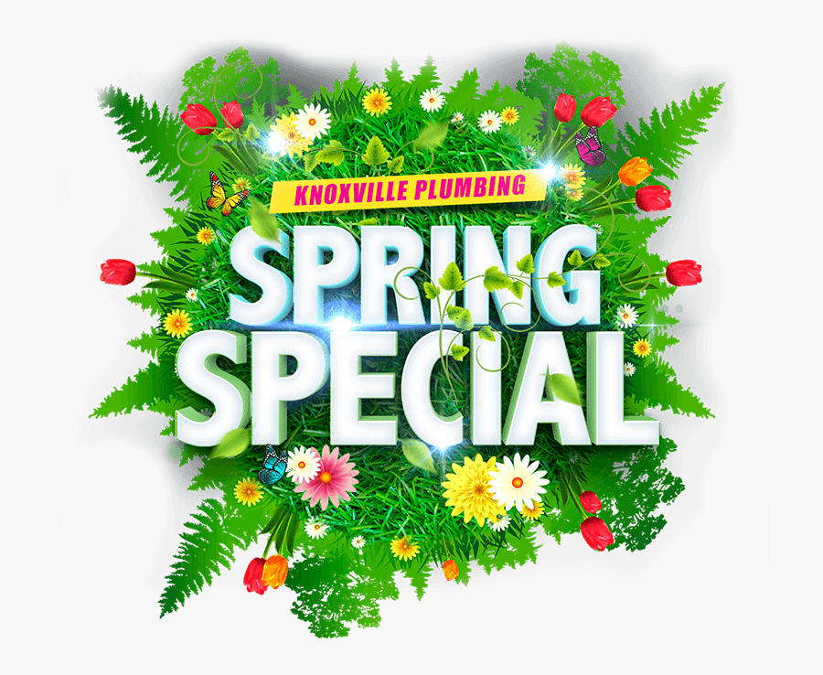 Spring Cleaning Special, Transparent Clipart