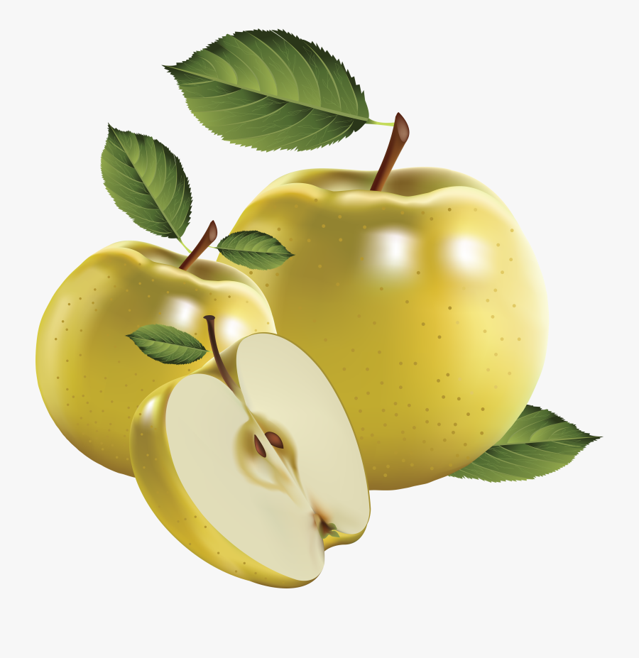 """Green Apple""""s Png Image - Realistic Fruit Vector, Transparent Clipart"""