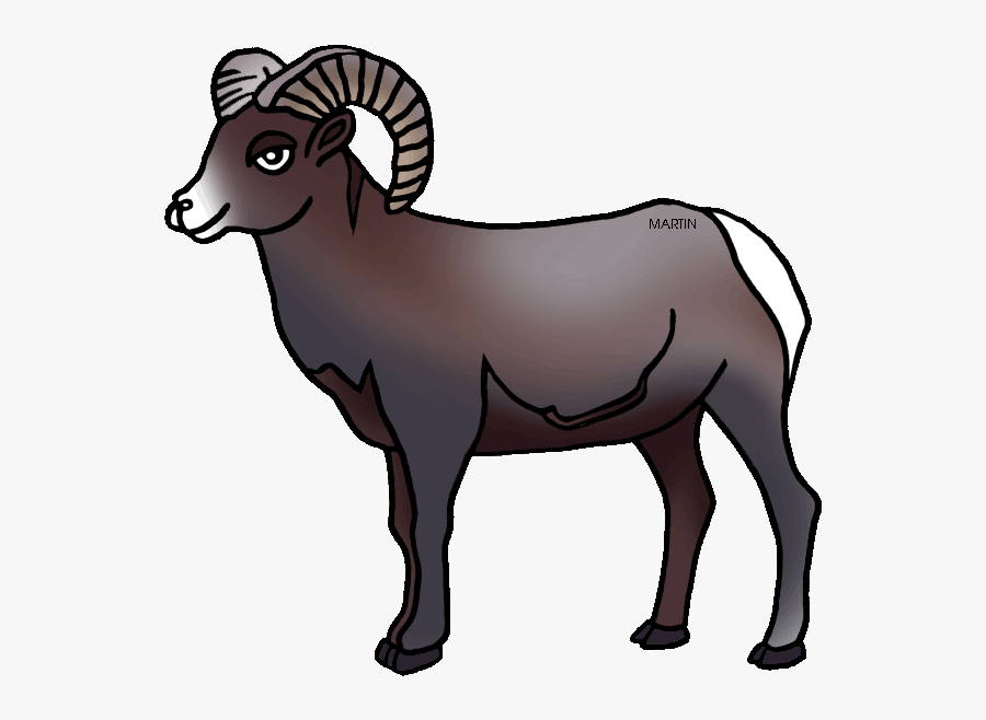United States Clip Art By Phillip Martin, Colorado - Bighorn Sheep Clipart, Transparent Clipart