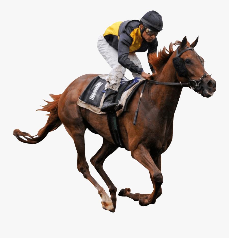 Clip Art Horse Racing Vector - Horse Riding Gif Png, Transparent Clipart