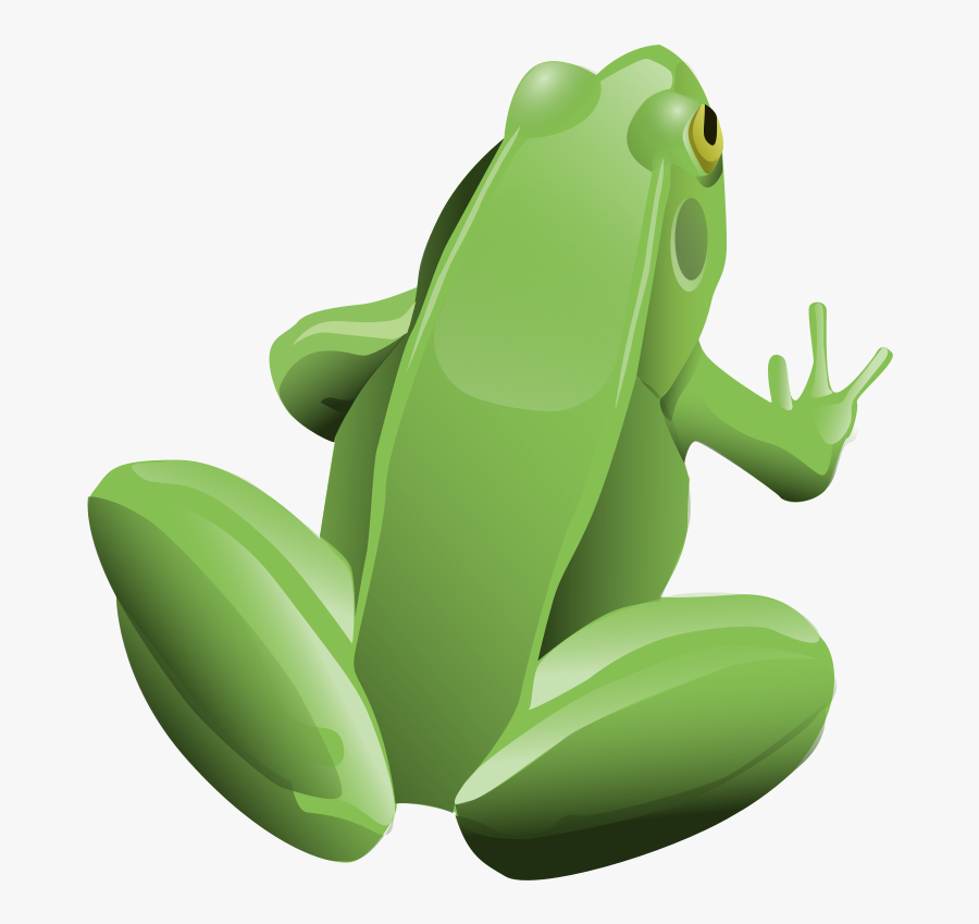 Frog, Amphibian, Animal, Green, Tree Frog - Top Of A Cartoon Frog, Transparent Clipart