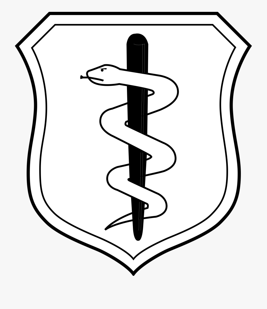 United States Air Force Medical Corps Badge - Air Force Dental Badge, Transparent Clipart
