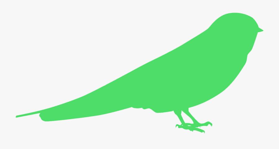 Parrot, Transparent Clipart