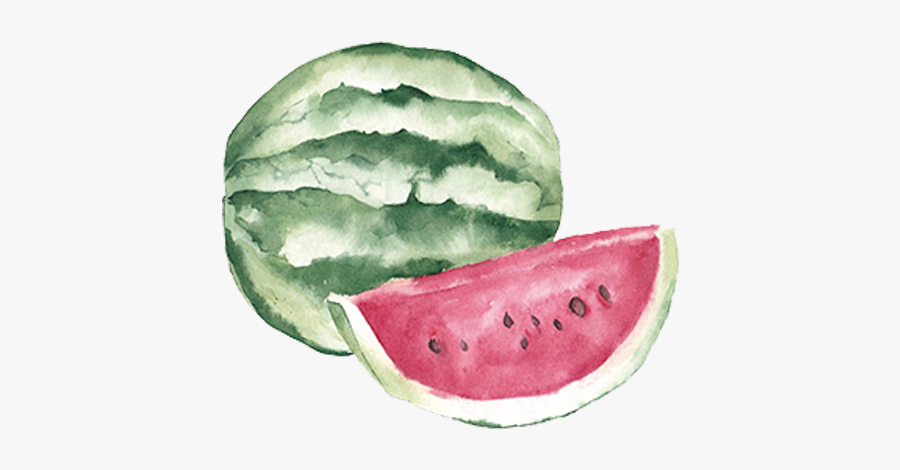 Fruit Auglis Clip Art - Watercolor Watermelon Png, Transparent Clipart
