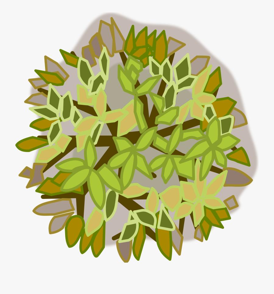 Plant Stem,plant,flower - Tree Top View Design, Transparent Clipart