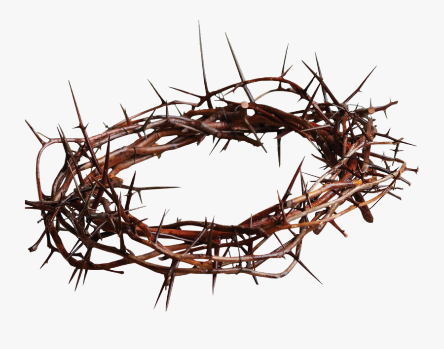Clip Art Jesus Thorns - Crown Of Thorns, Transparent Clipart