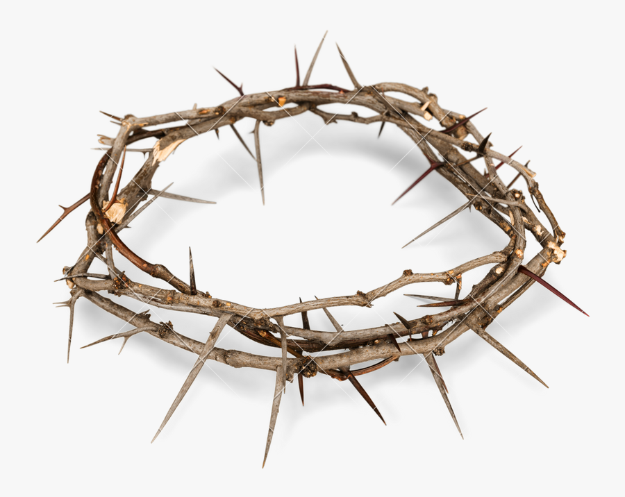 Crown Of Thorns Png Free Background - Transparent Background Crown Of Thorns Png, Transparent Clipart