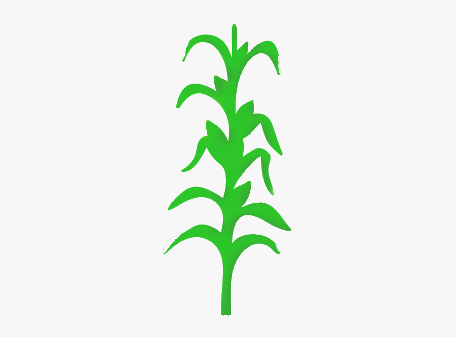 Wall Decal Stencil Mural Painting - Corn Plant Icon, Transparent Clipart
