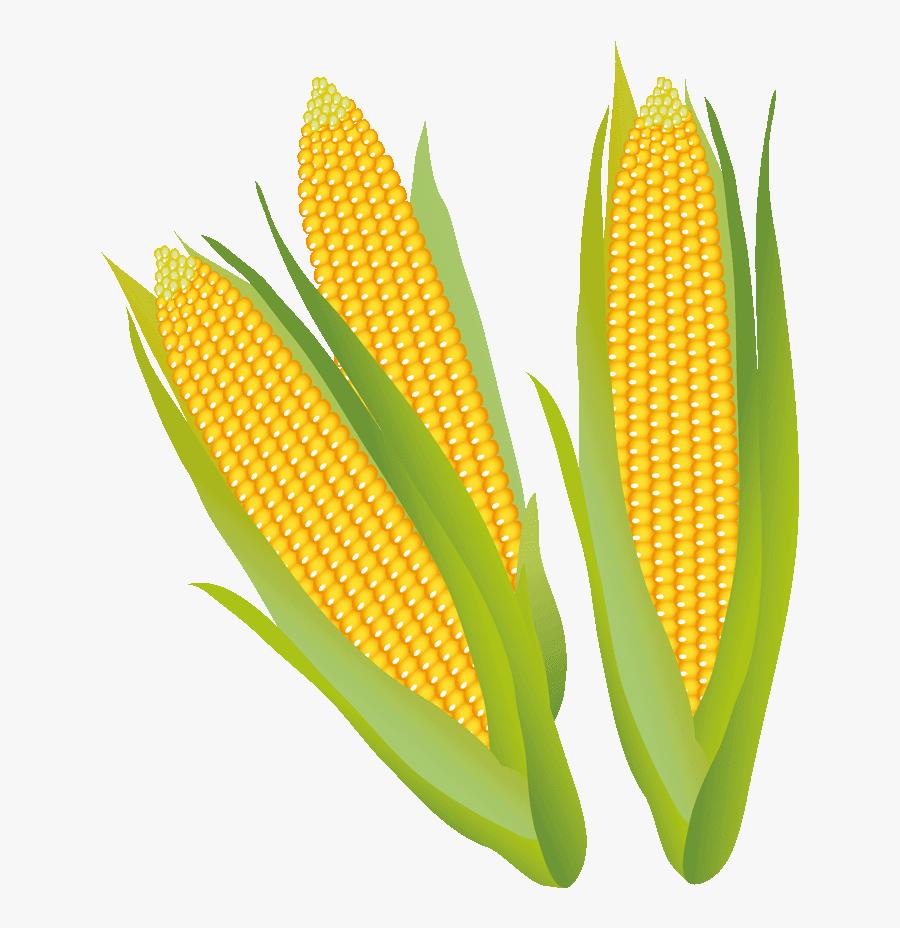 Corn Clipart Corn Stalk - Corn On The Cob, Transparent Clipart