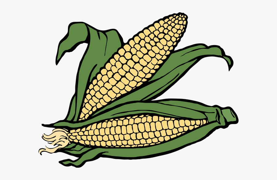 Ear Autumn Two Of Corn Clipart Fall Image And Transparent - Ears Of Corn Clipart, Transparent Clipart