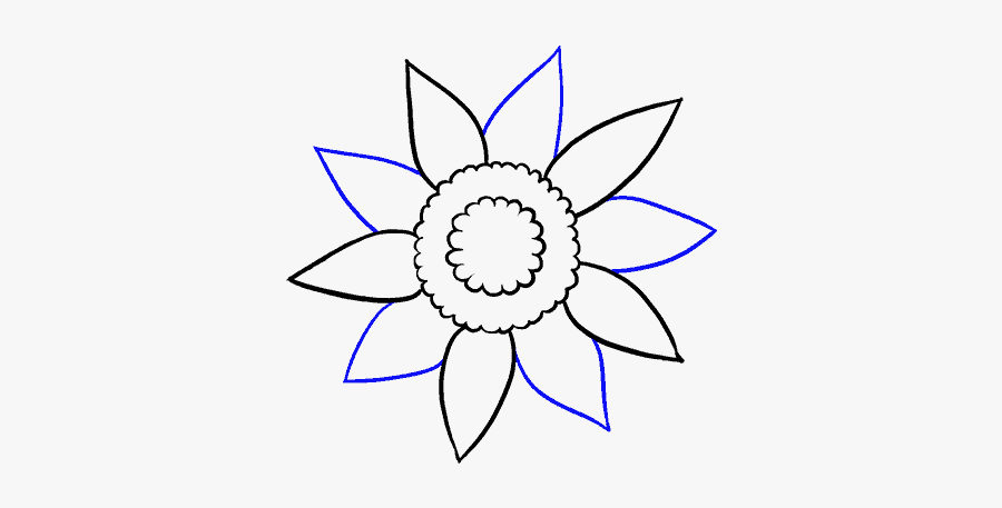 How To Draw Sunflower - Sunflower Petals Drawing, Transparent Clipart