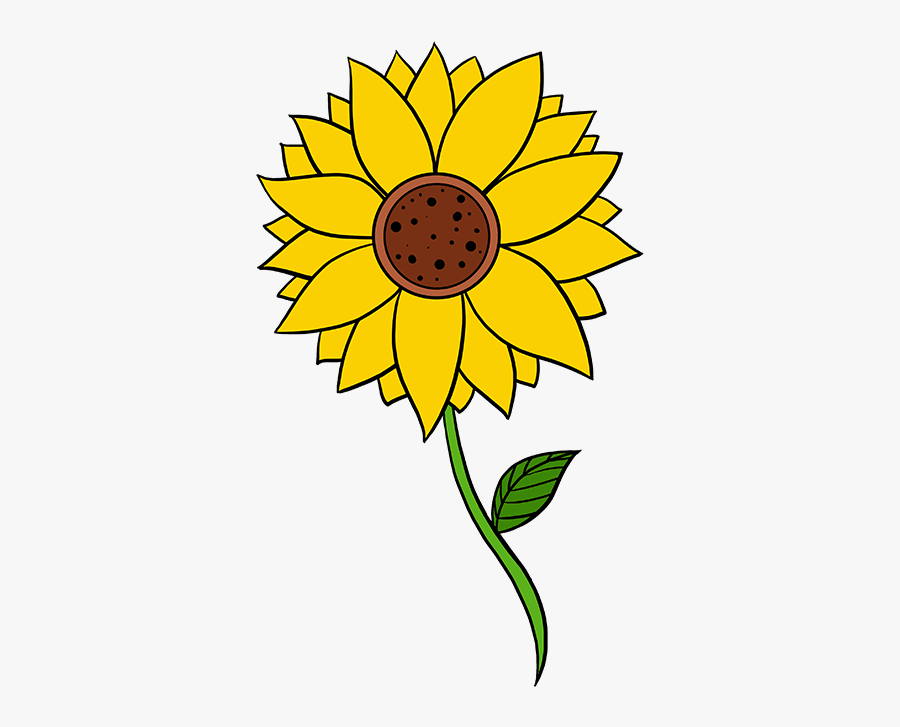 How To Draw Sunflower - Step By Step Sunflower Drawings Easy, Transparent Clipart