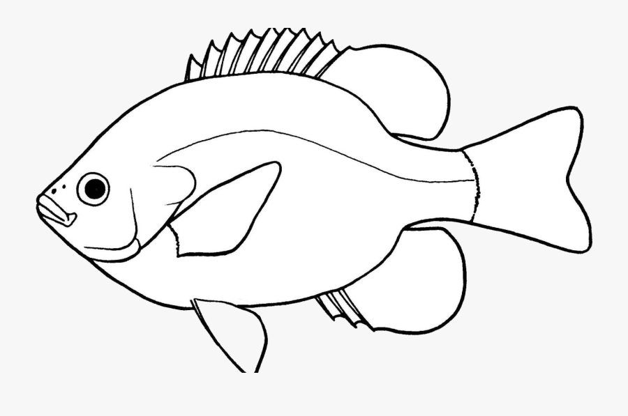 Fish Lovely Of Clipart Black And White Letter Master - Bass Fish Drawing Easy, Transparent Clipart