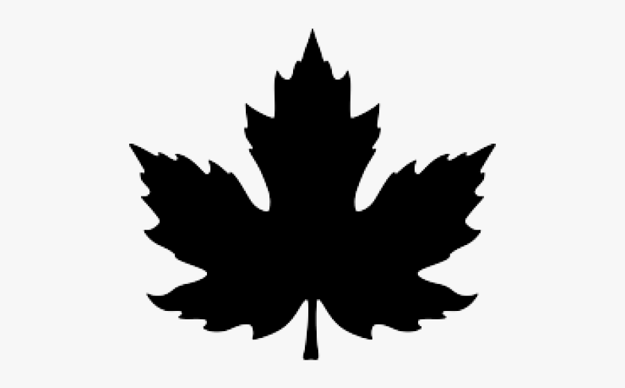 Red Maple Leaf Drawing, Transparent Clipart