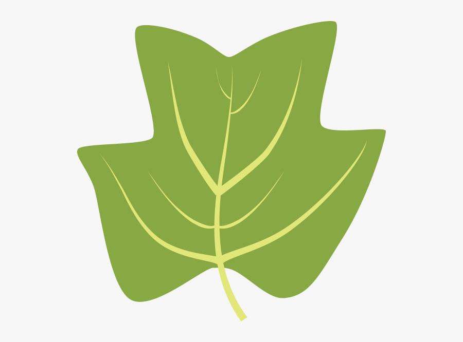 Tulip Tree Leaf Clipart, Transparent Clipart