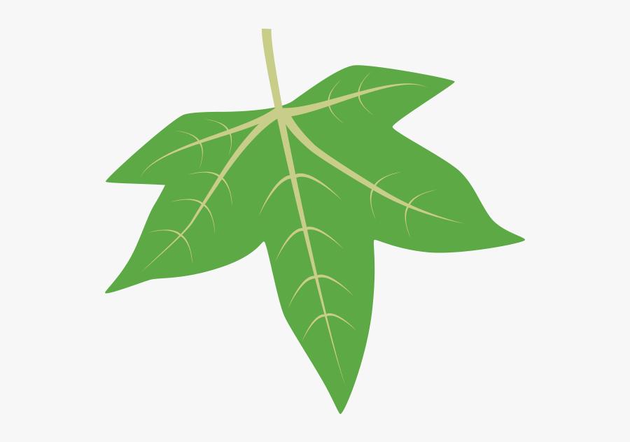 Sweetgum Tree Leaf Id, Transparent Clipart