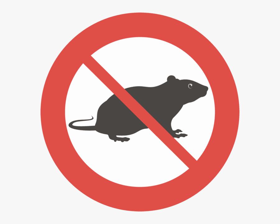 Rodent Clipart Pest Control - Control De Las Plagas, Transparent Clipart