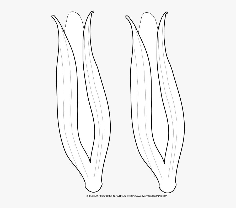 Transparent Indian Corn Clipart - Monochrome, Transparent Clipart