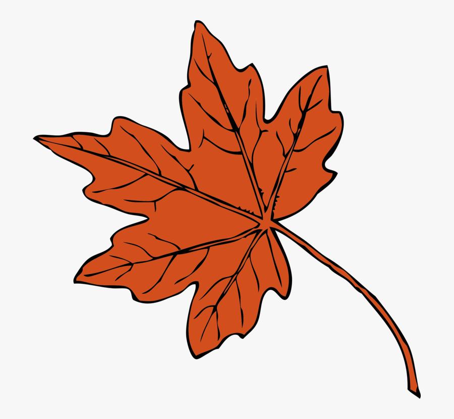 Maple Leaf Drawing Autumn Leaf Color Red Maple Cc0 - Maple Leaf Clipart, Transparent Clipart