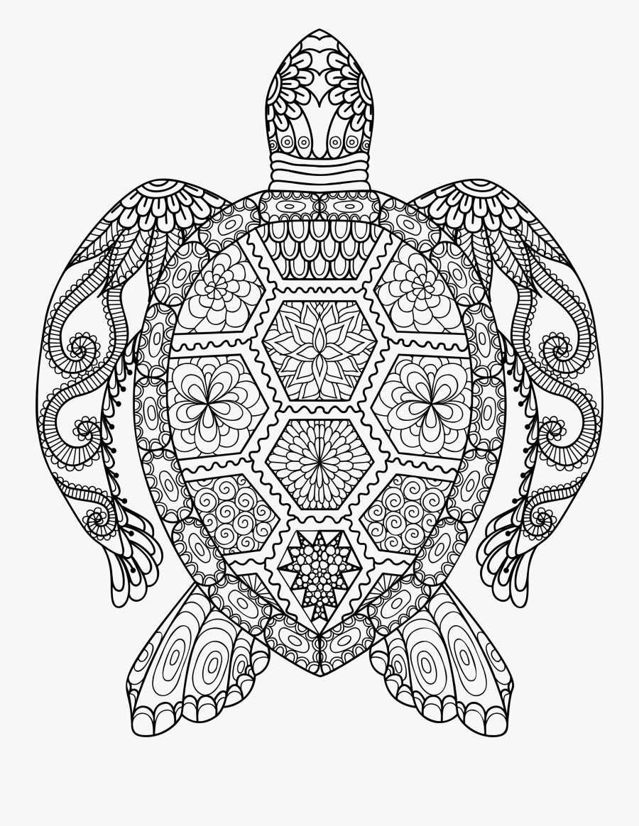 - Drawn Sea Turtle Symmetrical - Adult Coloring Pages Turtle , Free
