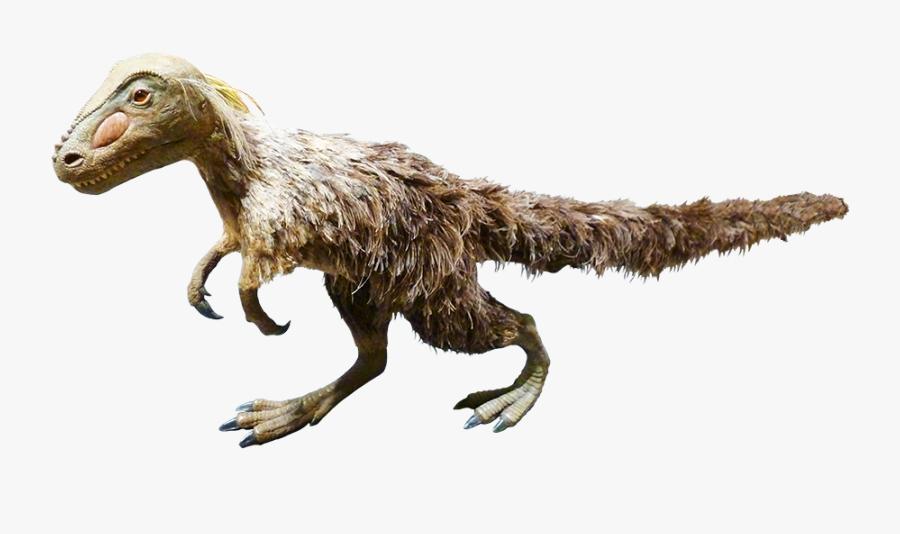 Feathered Dinosaur Clipart - Dinosaur Clipart Dinosaur Jokes Clipartqueen, Transparent Clipart