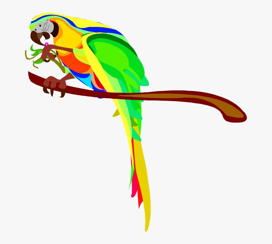 Macaw Parrot Clip Art Clipart Free Clipart - Australian Parrots Clipart, Transparent Clipart