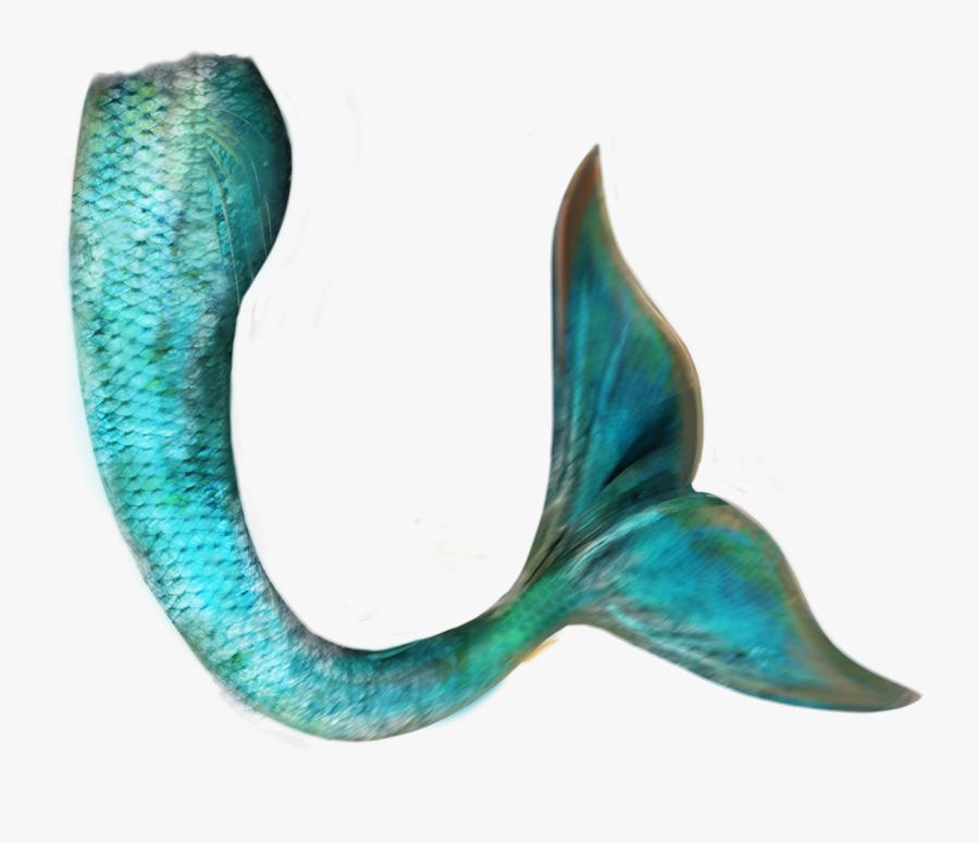 Transparent Mermaid Png Tumblr - Blue Mermaid Tail Png, Transparent Clipart