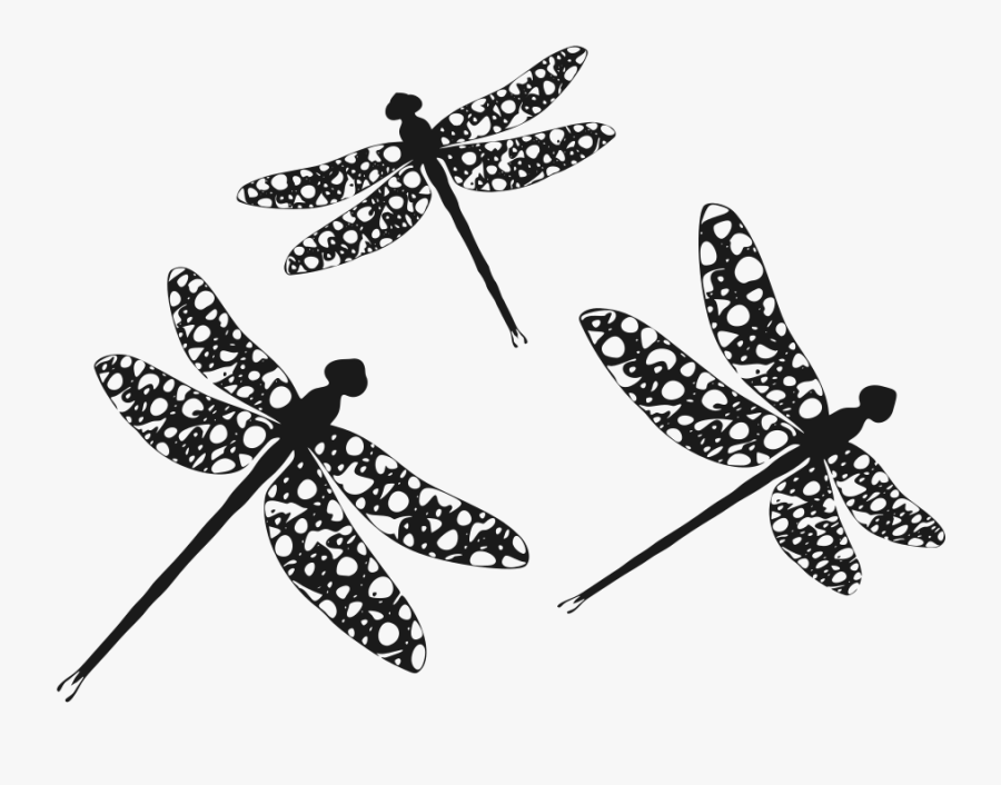 Transparent Dragonfly Clip Art - Dragonfly Silhouette Clipart, Transparent Clipart
