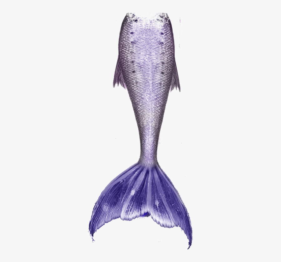 Mermaid Tail Free Download Png - Mermaid Tail With Clear Background, Transparent Clipart