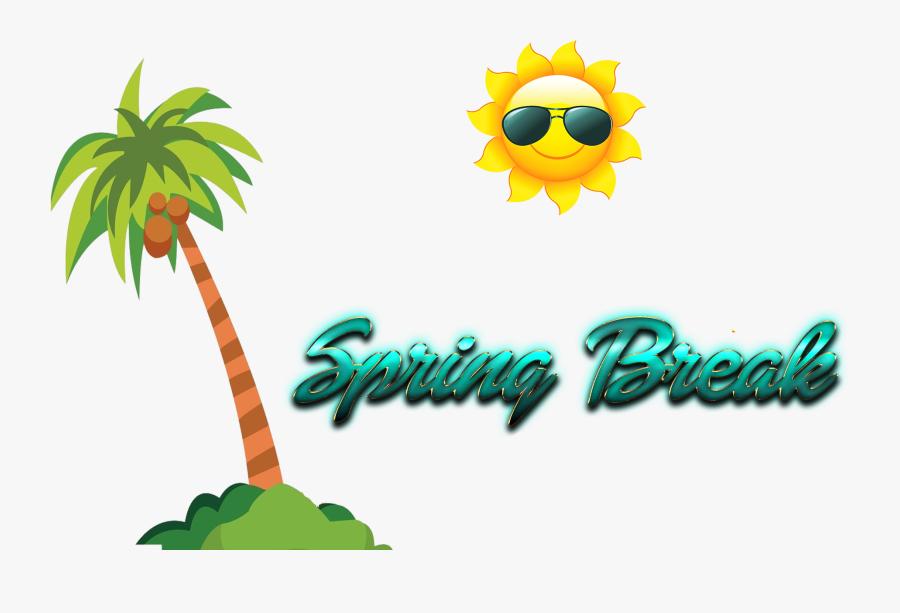 Spring Break Png Photo - Clip Art Coconut Tree Png, Transparent Clipart