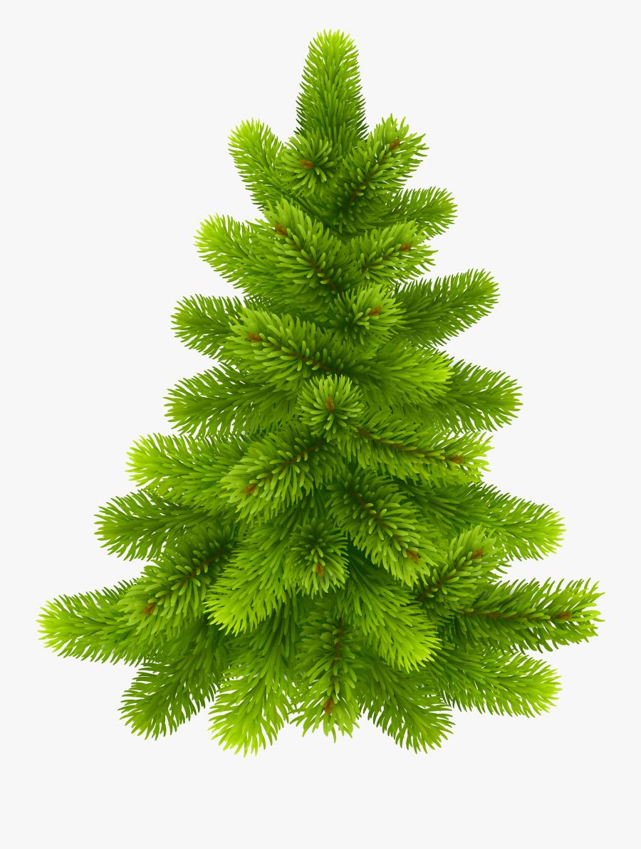 Pine Tree Png Clip Art - Pine Tree Art Clip Png, Transparent Clipart