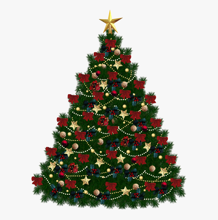 Tree Clipart No Background - Christmas Tree With Clear Background, Transparent Clipart