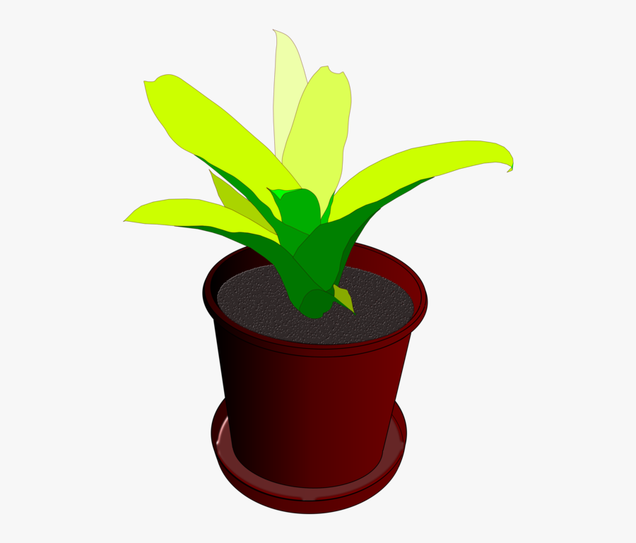Plant Pot Flower Free Vector Graphic On Pixabay - Animated Plant In Pot, Transparent Clipart