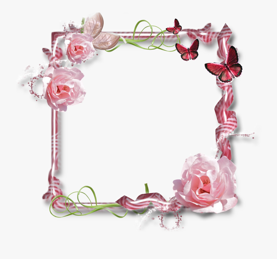 Frame For Scrap Booking Are Taggin - Pink Rose Flower, Transparent Clipart