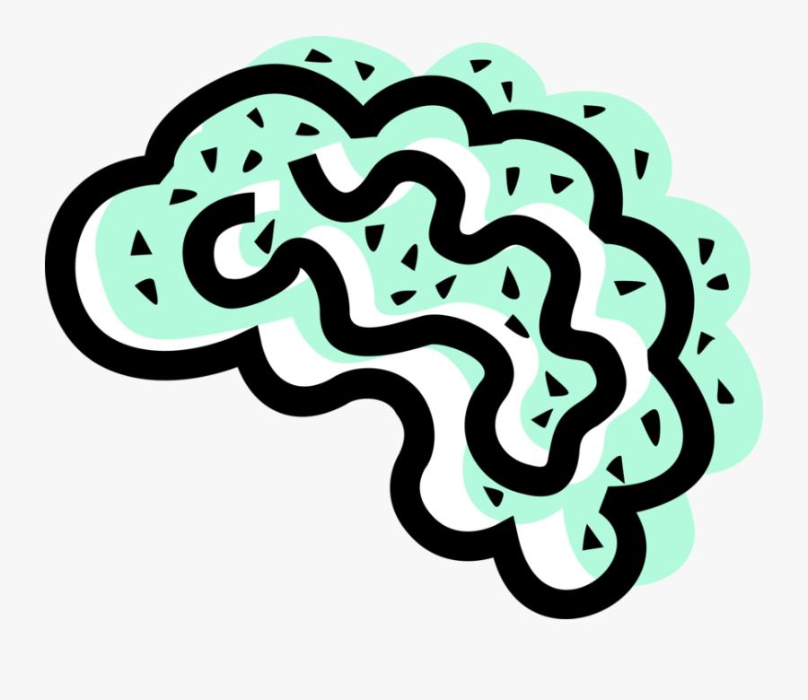 Vector Illustration Of Human Brain Organ Serves As - Illustration, Transparent Clipart