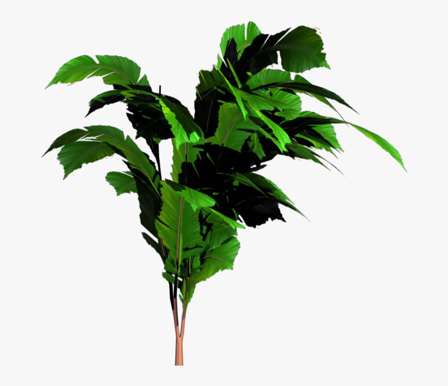 Transparent Jungle Clipart - Banana Tree Png, Transparent Clipart