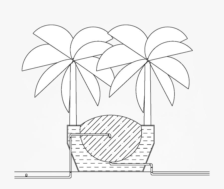 Section Banana Tree - Illustration, Transparent Clipart