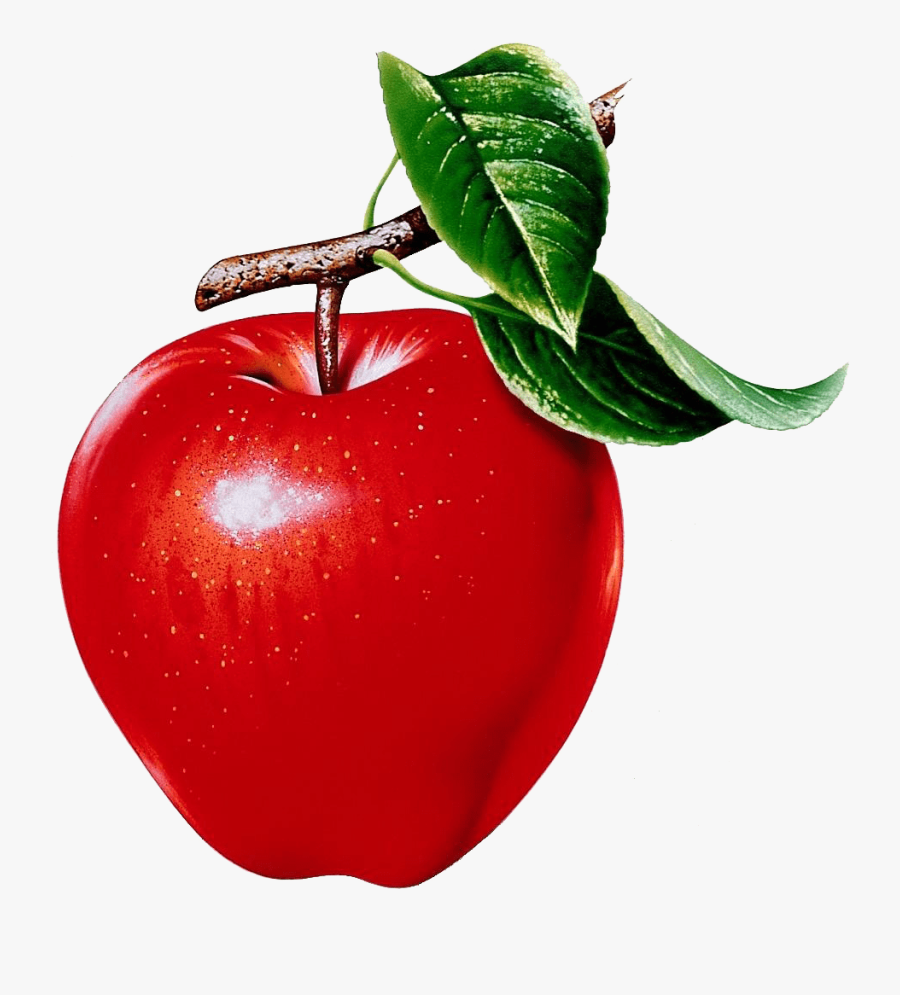 Rubrics Graphic Royalty Free Library - Apple Fruit Pictures Printable, Transparent Clipart