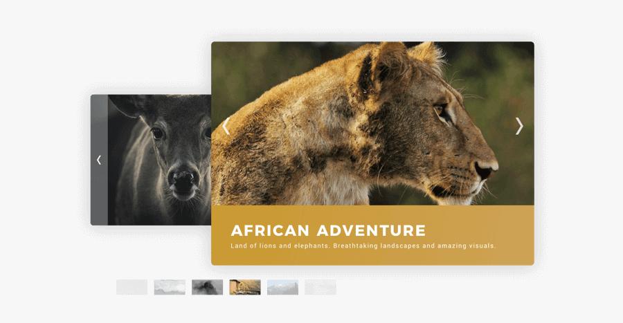 Photo Slideshow Example - Photography, Transparent Clipart