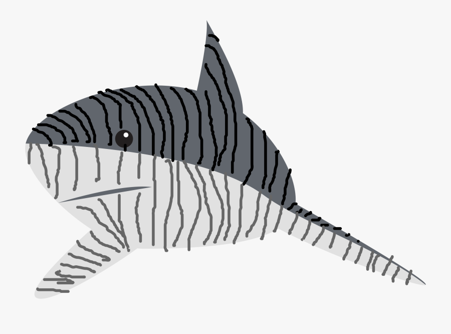 Tiger Shark Drawing Line Art Great White Shark - Tiger Shark, Transparent Clipart