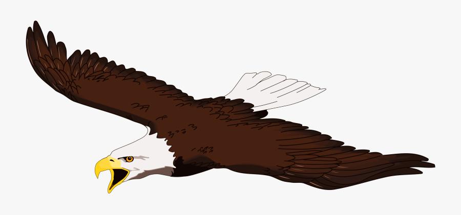 Clipart Eagle - Flying Clipart Bald Eagle, Transparent Clipart