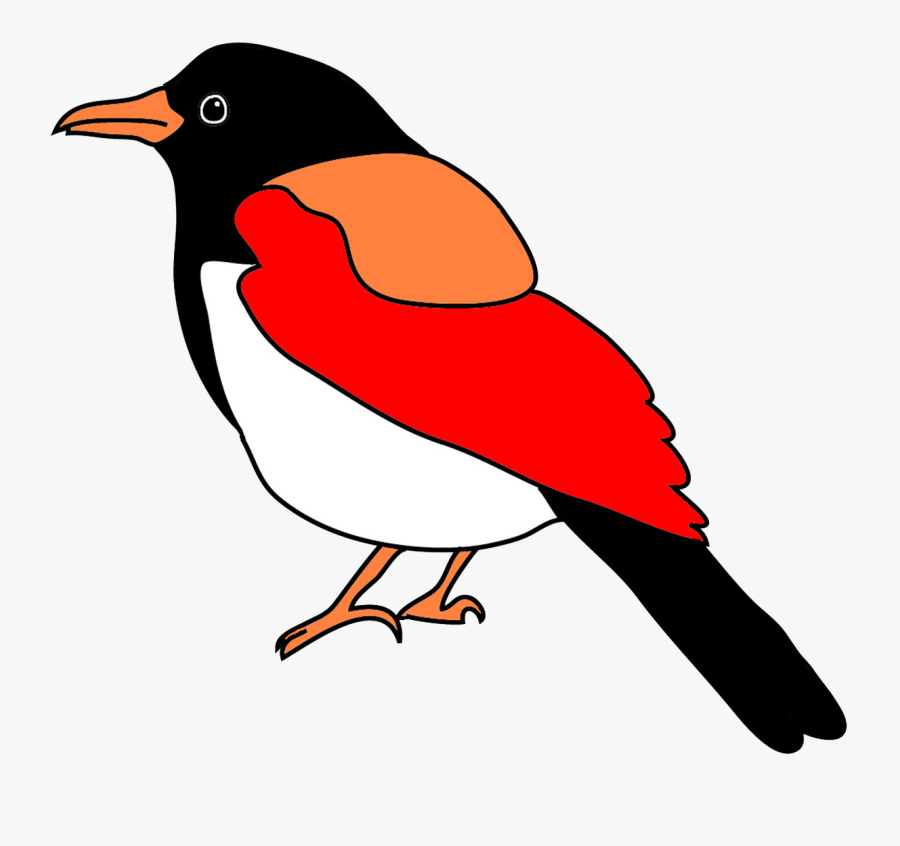 Blackbilled Magpie In Fantasy Colors - Easy Bird Drawing Colored, Transparent Clipart