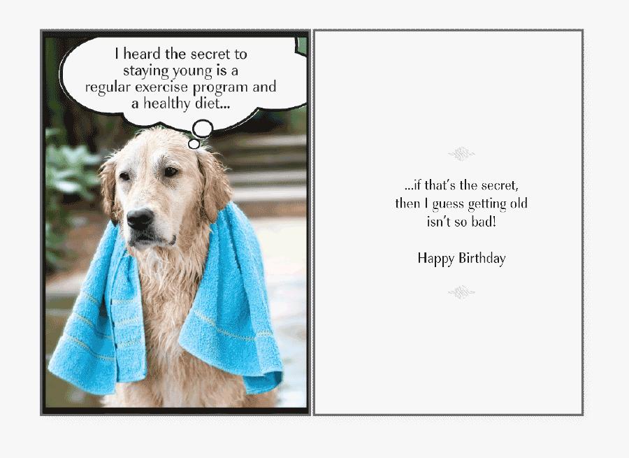 Transparent Happy Birthday Clipart Funny Happy Birthday For S Dog Lover Free Transparent Clipart Clipartkey